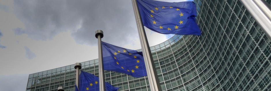 A Liberal Euro-Dividend